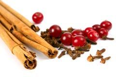 Cinnamon, Carnation And Berry Stock Photos