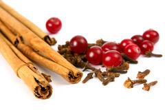 Cinnamon, carnation and berry stock photos