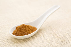 Cinnamon (cassia) bark powder Royalty Free Stock Images