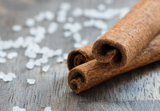 Cinnamon (cassia) sticks and sea salt Stock Image