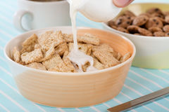 Cinnamon Cereal Royalty Free Stock Photography