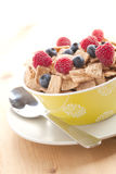 Cinnamon cereals with fruits Royalty Free Stock Image