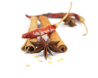 Cinnamon, chili pepper and anise. Cinnamon sticks, chili pepper and anise isolated on white background Royalty Free Stock Photo