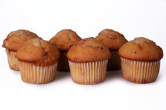 Cinnamon Chip Muffins Royalty Free Stock Photos