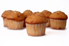 Cinnamon Chip Muffins Royalty Free Stock Photography