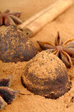 Cinnamon chocolate truffles and Star anise Royalty Free Stock Image