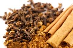 Cinnamon and clove stock image