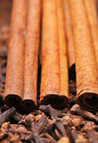 Cinnamon and clove Royalty Free Stock Photo