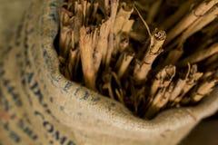 Cinnamon Royalty Free Stock Image
