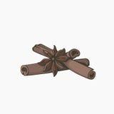 Cinnamon cowberry retro illustration. Stock Photography