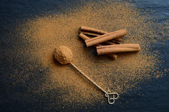 Cinnamon on a dark backround Stock Image