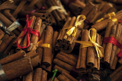 Cinnamon in the electoral focus Royalty Free Stock Photography