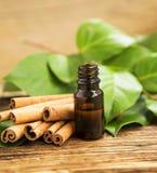 Cinnamon Essence Stock Image