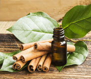 Cinnamon Essence Stock Photo