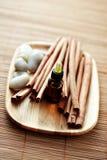 Cinnamon essential oil Stock Photography