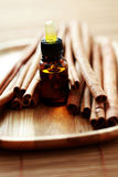 Cinnamon essential oil Royalty Free Stock Images