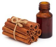 Cinnamon with essential oil. Bunch of some fresh aromatic cinnamon with essential oil in a bottle Royalty Free Stock Photos
