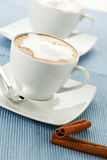 Cinnamon flavored cappuccino Royalty Free Stock Photos