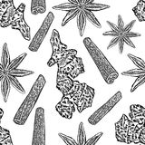 Cinnamon, ginger root, star anise isolated on white background, Hand drawn graphic vector sketch, Seamless pattern Stock Photography