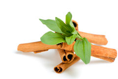 Cinnamon and green leaves Royalty Free Stock Photo
