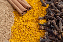 Cinnamon ground and in sticks, cloves, curry Royalty Free Stock Image