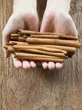Cinnamon in hand Royalty Free Stock Photo