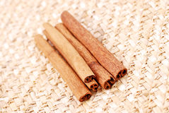 Cinnamon Harvest Stock Image