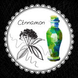 Cinnamon. Health and Nature Collection. Aromatic cinnamon oil (watercolor and graphic illustration Royalty Free Stock Images