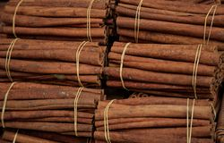 Cinnamon sticks on tied rolls. Canella natural brown aromatic spice background. Stock Photo