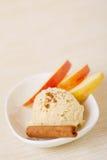 Cinnamon ice cream with cinnamon stick Stock Image
