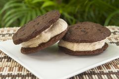 Cinnamon Ice Cream Sandwich with Chocolate Cookies Stock Photography