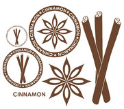 Cinnamon. Isolated objects on white background. Vector illustration (EPS 10 Royalty Free Stock Images