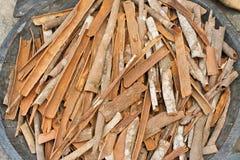 Cinnamon in Kerala, India Royalty Free Stock Images