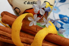 Cinnamon, lemon and flowers. Cinnamon sticks decorated with lemon peel and small flowers Royalty Free Stock Image