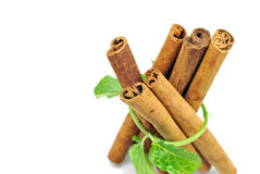 Cinnamon and mint Stock Images