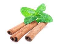 Cinnamon and mint isolated . Stock Photos