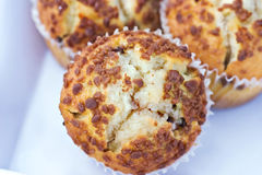Cinnamon muffins Royalty Free Stock Photo