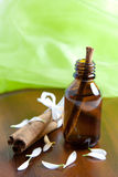 Cinnamon oil Royalty Free Stock Image