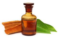 Cinnamon oil with bark Stock Photo