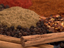 Cinnamon and Other Spices Stock Photography