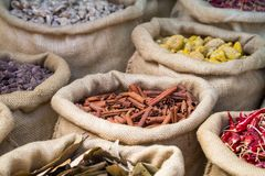 Cinnamon and other spices in the bags Royalty Free Stock Images