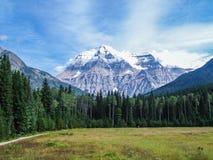 Cinnamon Peak Royalty Free Stock Image