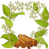 Cinnamon  vector frame. Cinnamon plant vector frame on white background Royalty Free Stock Photo
