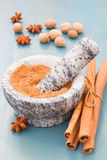 Cinnamon powdered in mortar on blue table Stock Images