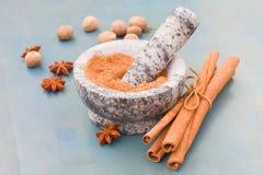 Cinnamon powdered in mortar Royalty Free Stock Photos