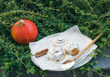 Cinnamon pumpkin buns with creamy cheese icing and ripe round pu Stock Photography