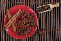 Cinnamon on Red Plate Royalty Free Stock Photo