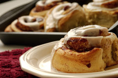 Cinnamon roll. On a plate with a pan full of more s out of focus in the background Royalty Free Stock Photography
