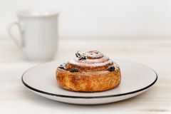 Cinnamon roll with raisins in a ceramic saucer Royalty Free Stock Photos