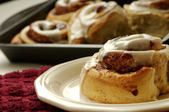 Cinnamon rolls. In a pan. Hot out of the oven Stock Photos